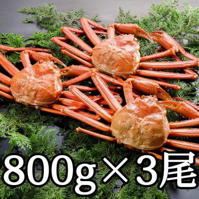 紅ズワイガニ 800g×3尾