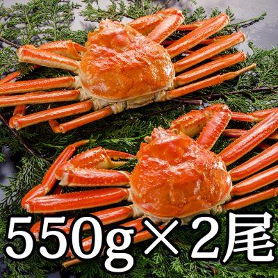 本ズワイガニ(カナダ産) 550g×2尾