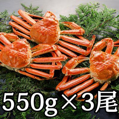 本ズワイガニ(カナダ産) 550g×3尾
