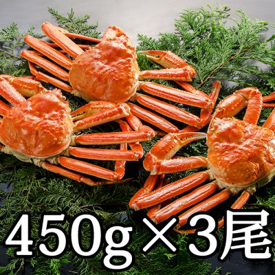 本ズワイガニ(カナダ産) 450g×3尾