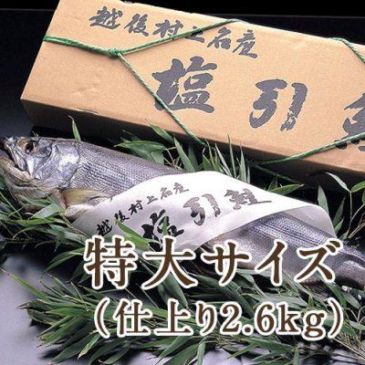 村上名産 塩引き鮭まるごと1本 特大サイズ(仕上り2.6kg)