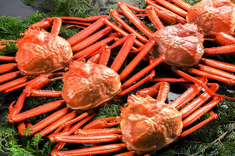 高級蟹の王道、本ズワイ蟹を厳選!高品質の「カナダ産」