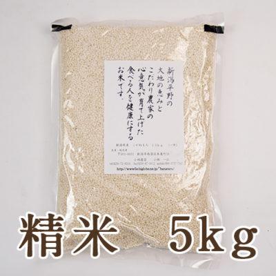 新潟産こがねもち(もち米)精米5kg