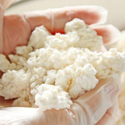 新潟県産米の米麹
