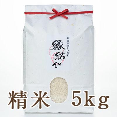 魚沼産 縁結び 精米5kg