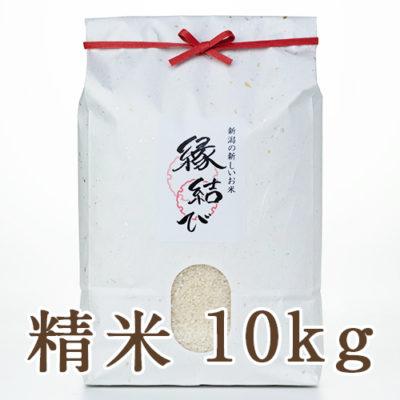 魚沼産 縁結び 精米10kg