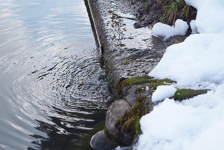 1.信濃川と雪解け水は稲作に最適な自然条件