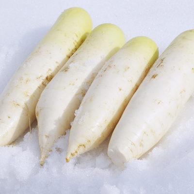 小千谷市伝統の「雪下貯蔵」で甘味を強める