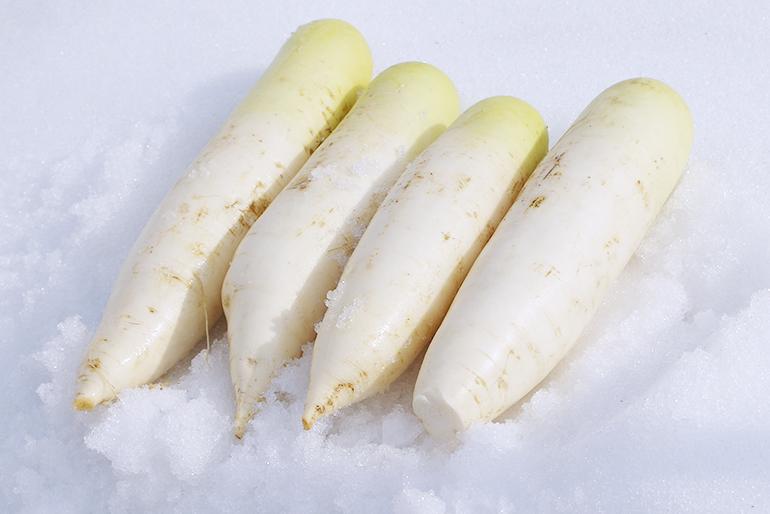 伝統の雪下貯蔵で甘味を強める