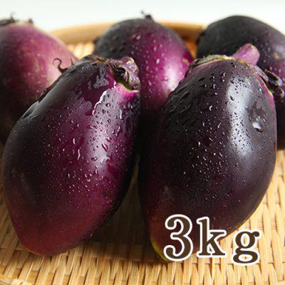 上越丸えんぴつナス 3kg(15個)