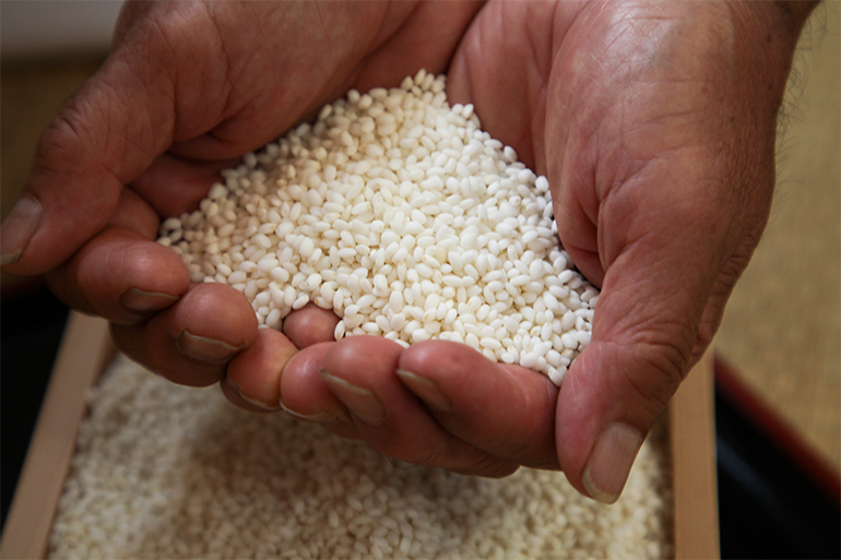 こだわりの栽培で作る自家製こがねもちを使用