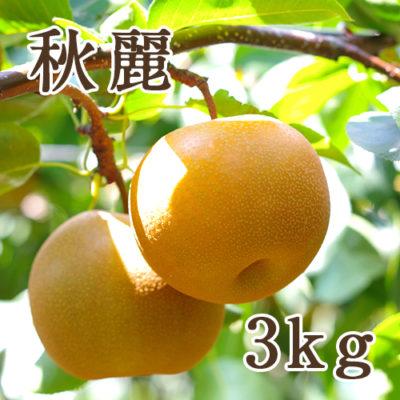 秋麗 3kg(7~9玉)