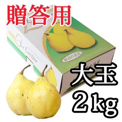【贈答用】ル・レクチェ 大玉 2kg(5~6玉)