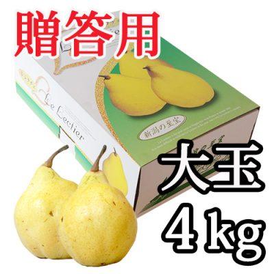 【贈答用】ル・レクチェ 大玉 4kg(7~10玉)