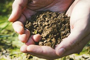 2.フカフカの土作り