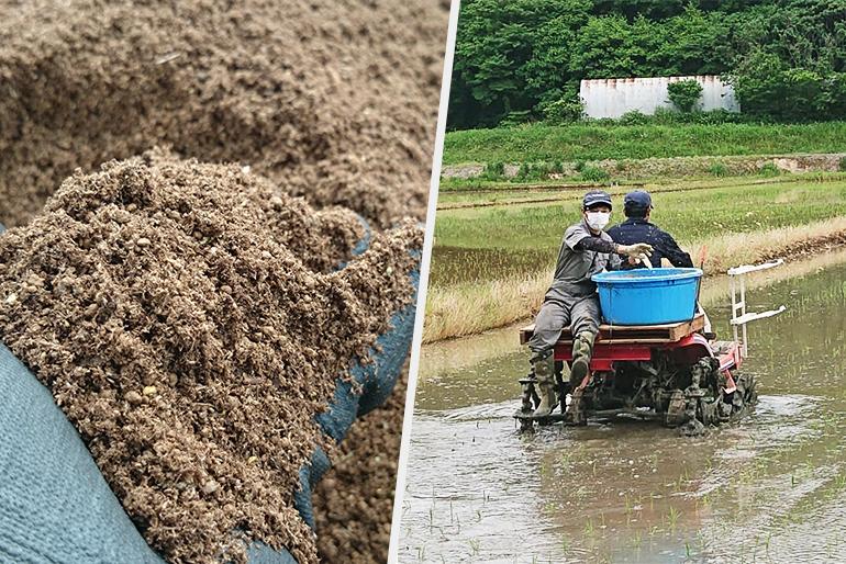 さまざまな工夫を凝らして有機栽培に取り組む