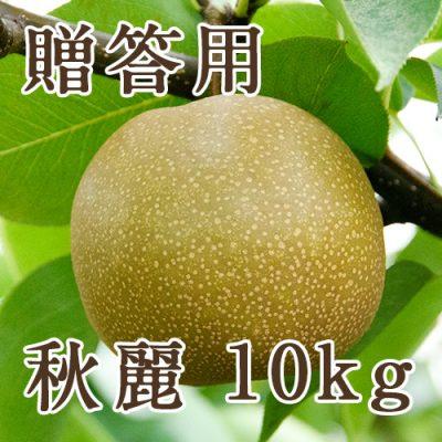 贈答用 秋麗 10kg(20~32玉)