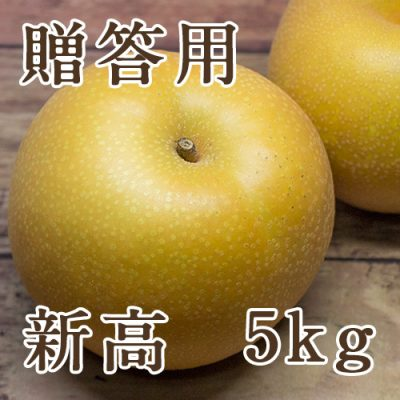贈答用 新高 5kg(6~12玉)