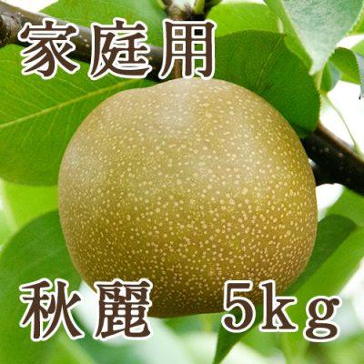 家庭用 秋麗 5kg(10~16玉)
