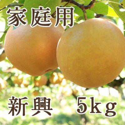 家庭用 新興 5kg(6~14玉)