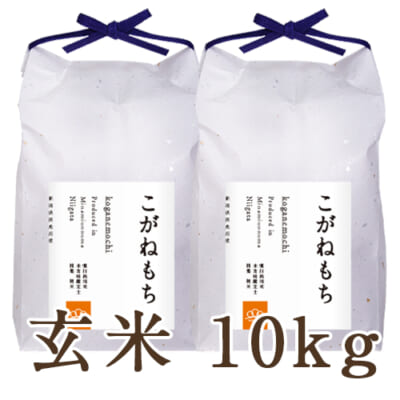 南魚沼産こがねもち 玄米10kg