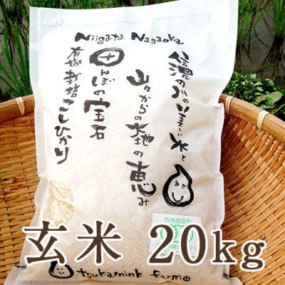 【定期購入】有機栽培米コシヒカリ 玄米20kg