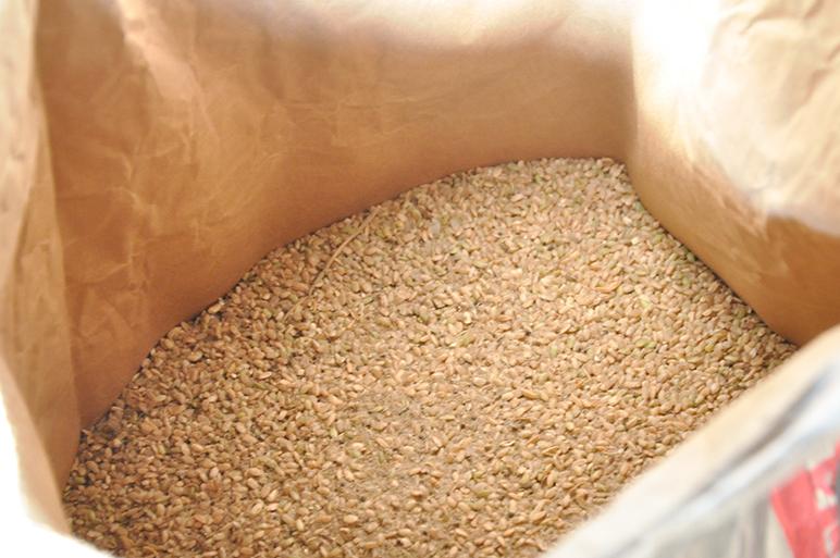 栽培が非常に難しい貴重なお米