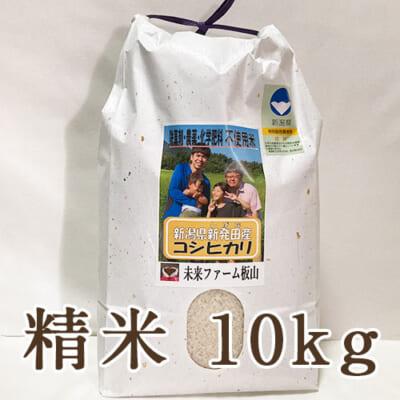 新潟産 従来品種コシヒカリ(特別栽培)精米10kg
