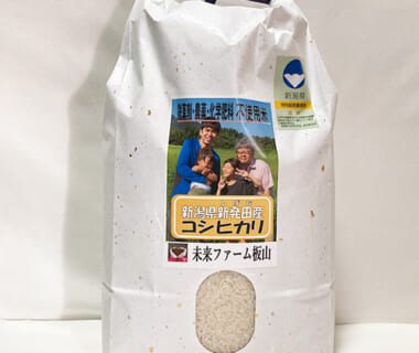 令和2年度米 新潟県産コシヒカリ(従来品種・特別栽培)