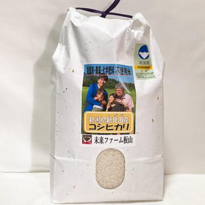 令和元年度米 新潟県産コシヒカリ(従来品種・特別栽培)