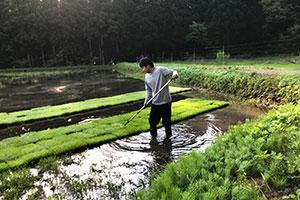 1.自然を生かした栽培