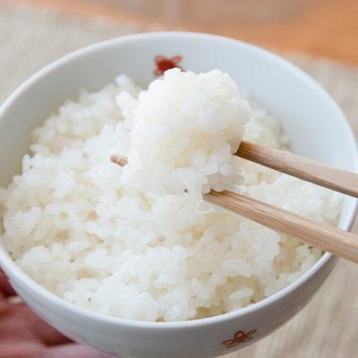 上質な粒が揃った極上米「こがねもち 」