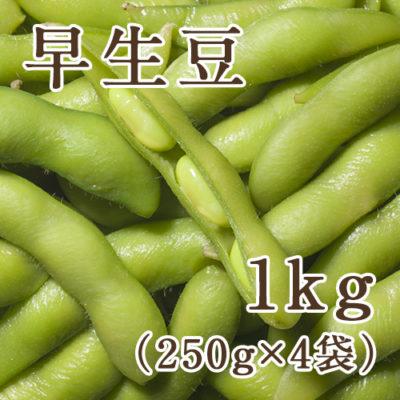 早生豆 1kg(250g×4袋)