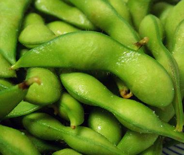 予約注文:新潟産枝豆・茶豆