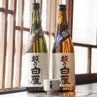 越乃白雁 親子で晩酌日本酒セット(おちょこ付き)