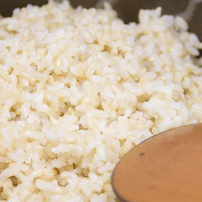 人気の玄米!