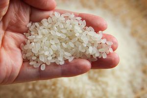 3.徹底した米の選別