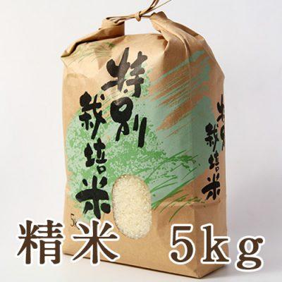 新発田市菅谷産コシヒカリ(特別栽培米)精米5kg