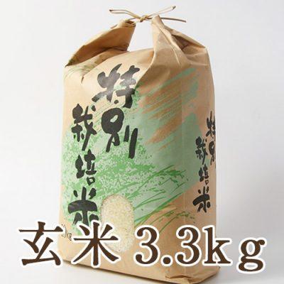 新発田市菅谷産コシヒカリ(特別栽培米)玄米3.3kg