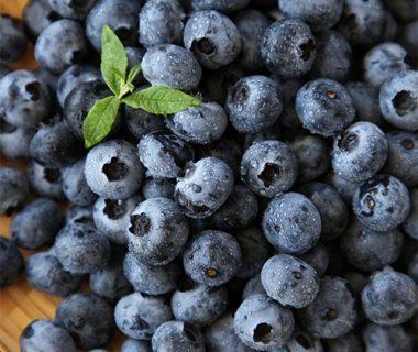 予約注文:国産 生食用ブルーベリー