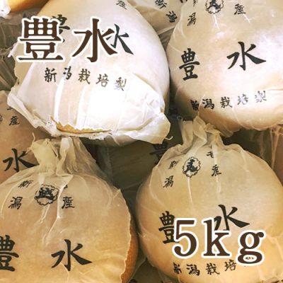 豊水 5kg(8〜12玉)