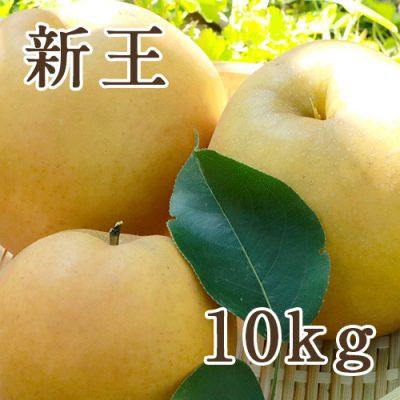 新王 10kg(16〜24玉)