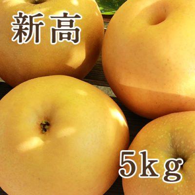 新高 5kg(5〜9玉)