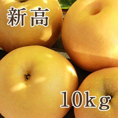 新高 10kg(10〜18玉)