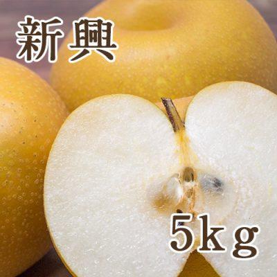 新興 5kg(6〜14玉)