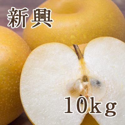 新興 10kg(12〜28玉)