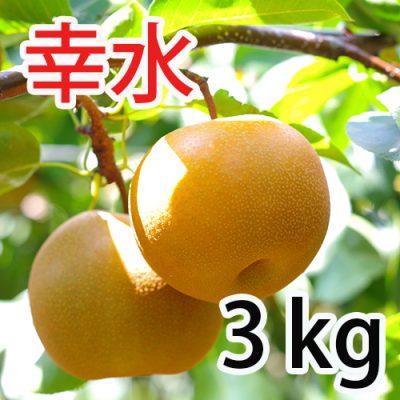 幸水  3kg (9~12玉)
