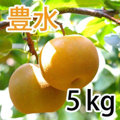 豊水  5kg (10~14玉)