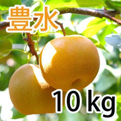 豊水  10kg (20~28玉)