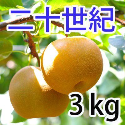 二十世紀 3kg(7~9玉)
